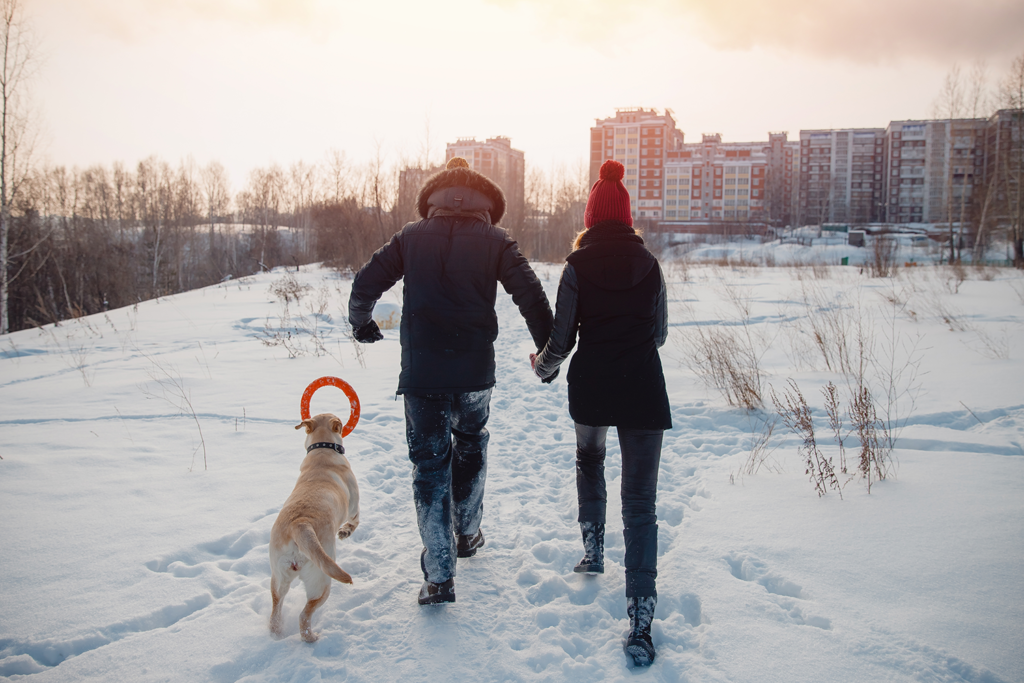 Couple walking their dog through a snow-filled park